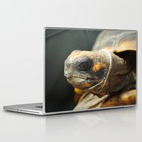 turtle Laptop & iPad Skins featuring turtle by Mylittleradical