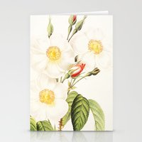III. Vintage Flowers Bot… Stationery Cards