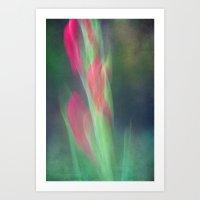 dreamy gladiolus Art Print