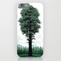 Giant Sequoia iPhone 6 Slim Case