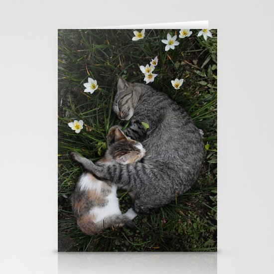 Sleep [A CAT AND A KITTEN] Stationery Card