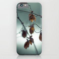Frost & beauty III Slim Case iPhone 6s
