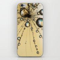 Single Dandy Seed Web Drops iPhone & iPod Skin