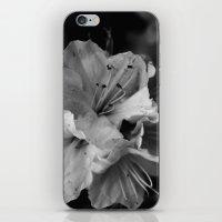 Timeless Black & White  iPhone & iPod Skin