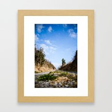 To the lake. Framed Art Print