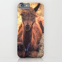 iPhone & iPod Case featuring Llama Tude by Bren
