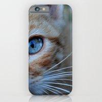 Cat Eyes iPhone 6 Slim Case