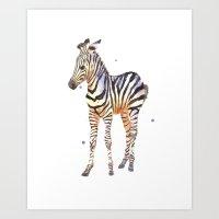 Zebra, Baby Zebra, Afric… Art Print