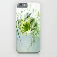iPhone & iPod Case featuring Nigella, Tarhaneidonkukka by Henrietta Hassinen