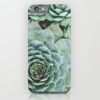 iPhone & iPod Case featuring Succulents I by Christine Hall