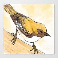 Yellow Blue Warbler Canvas Print