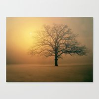 Winter Aubade Canvas Print