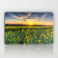 Late Afternoon April Fie… Laptop & iPad Skin