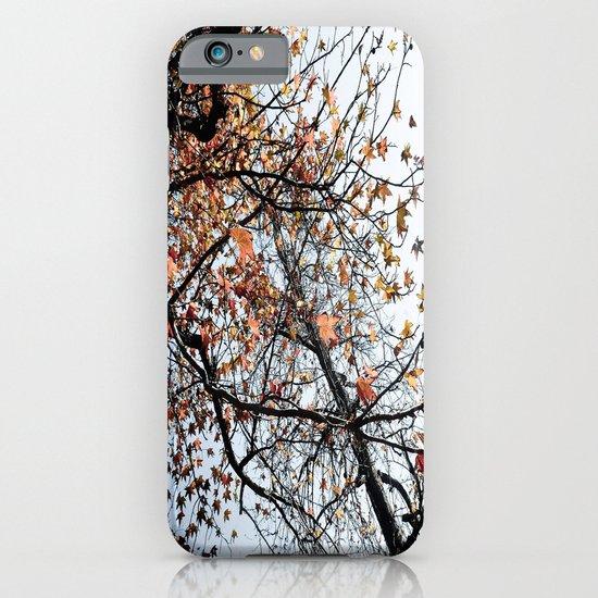 Fall II iPhone & iPod Case