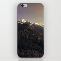 Sequoia National Park iPhone & iPod Skin