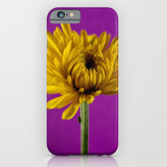 Grape and Lemon iPhone & iPod Case