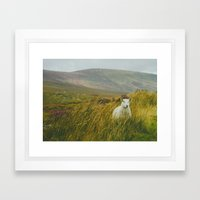 I See Ewe On The Sally G… Framed Art Print