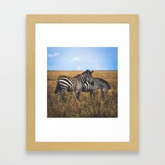 Masai Zebra Framed Art Print