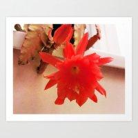 Blooming Lovely Art Print
