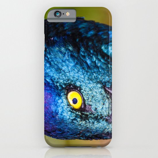 Iridescence iPhone & iPod Case
