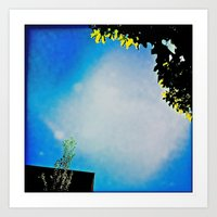 lantz45_IMG_1337 Art Print