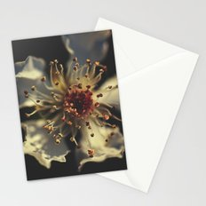 Forgotten Galaxy Stationery Cards
