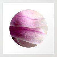 Planetary Bodies - Magnolia Petals Art Print