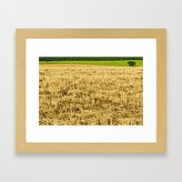 Summer field Framed Art Print