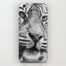 Mr Tiger iPhone & iPod Skin