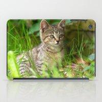 Sweet Baby Tiger iPad Case
