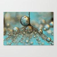 Dandy Shower In Silver &… Canvas Print