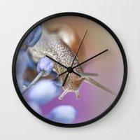 Snail on Grape Hyacinths Wall Clock