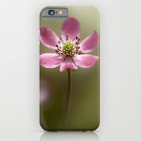 iPhone & iPod Case featuring Hepatica by Mandy Disher