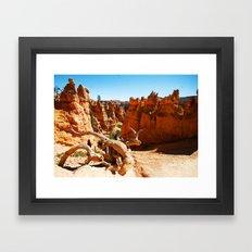 Bryce Canyon National Park. Utah, USA Framed Art Print