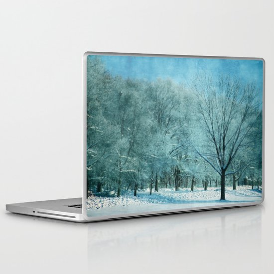Morning Frost Laptop & iPad Skin