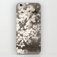 Little Notes To Myself �… iPhone & iPod Skin