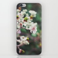 Rubus iPhone & iPod Skin