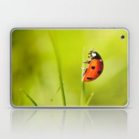 On top of a Grass Laptop & iPad Skin