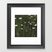 Daisy Days Framed Art Print