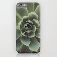 iPhone & iPod Case featuring Succulent by Andrea Hurley