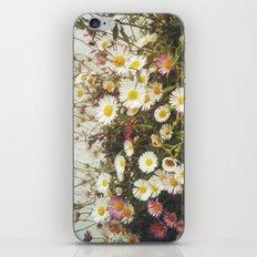 Wall of Daisies iPhone & iPod Skin