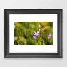 Ringing the bells to fairyland Framed Art Print