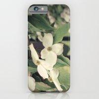 Dogwood Tree iPhone 6 Slim Case