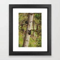 Climbing Cubs Framed Art Print