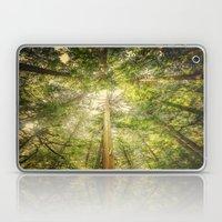 Forest Tree Tops Laptop & iPad Skin