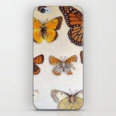 Specimin iPhone & iPod Skin
