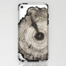 cross-section I iPhone & iPod Skin