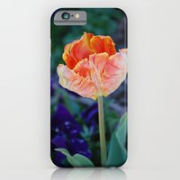 Tulip 5 iPhone 6 Slim Case