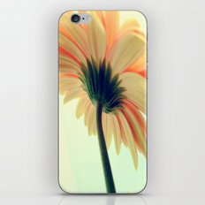 Flower in the spring iPhone & iPod Skin