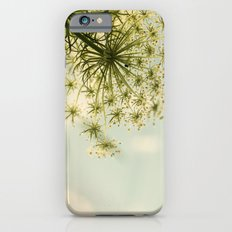 Botanical Queen Anne's Lace iPhone 6 Slim Case